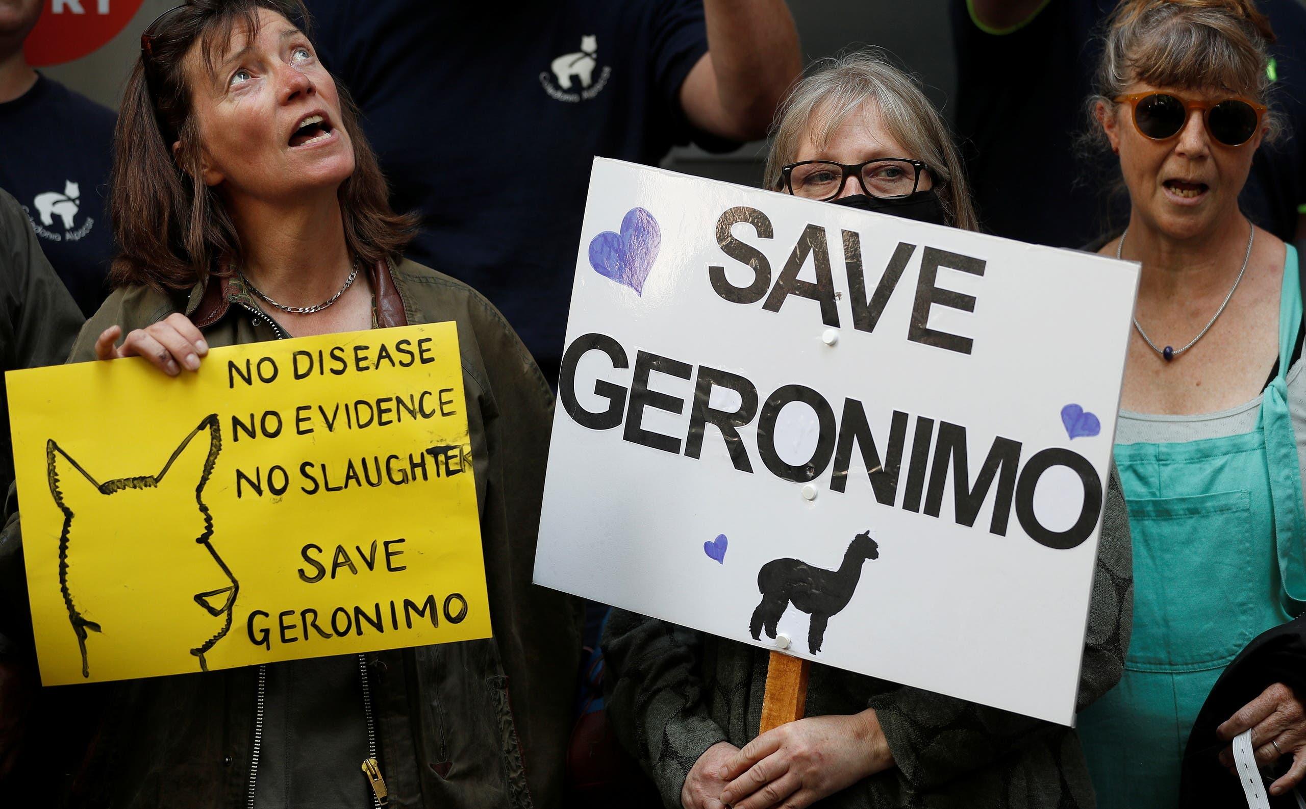 احتجاج في لندن لليون للمطالبة بإنقاذ جيرونيمو