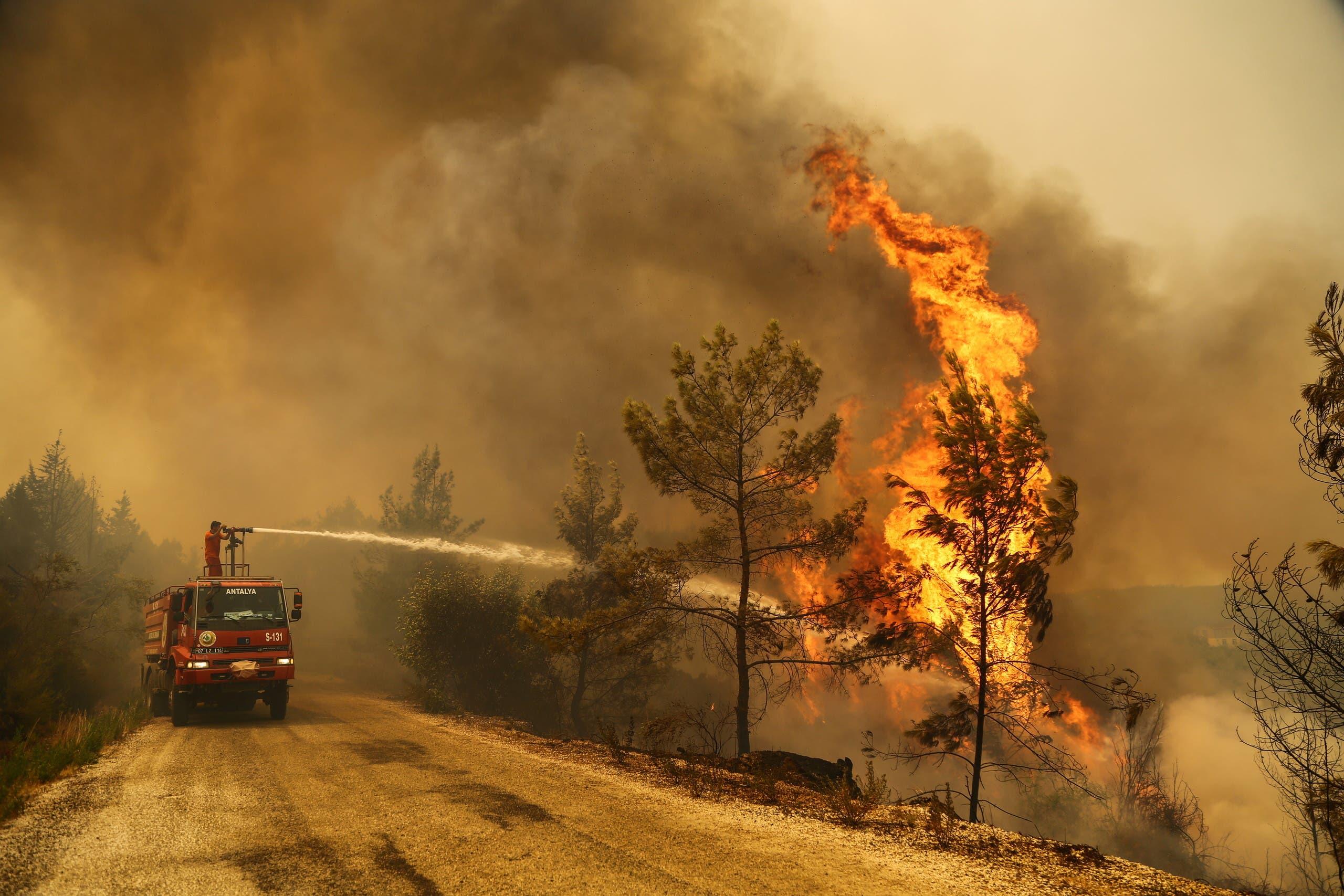 من حرائق الغابات في تركيا