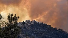 Death toll from Algeria wildfire climbs to 65: State TV