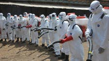 Explainer: What is the Ebola-like Marburg virus?