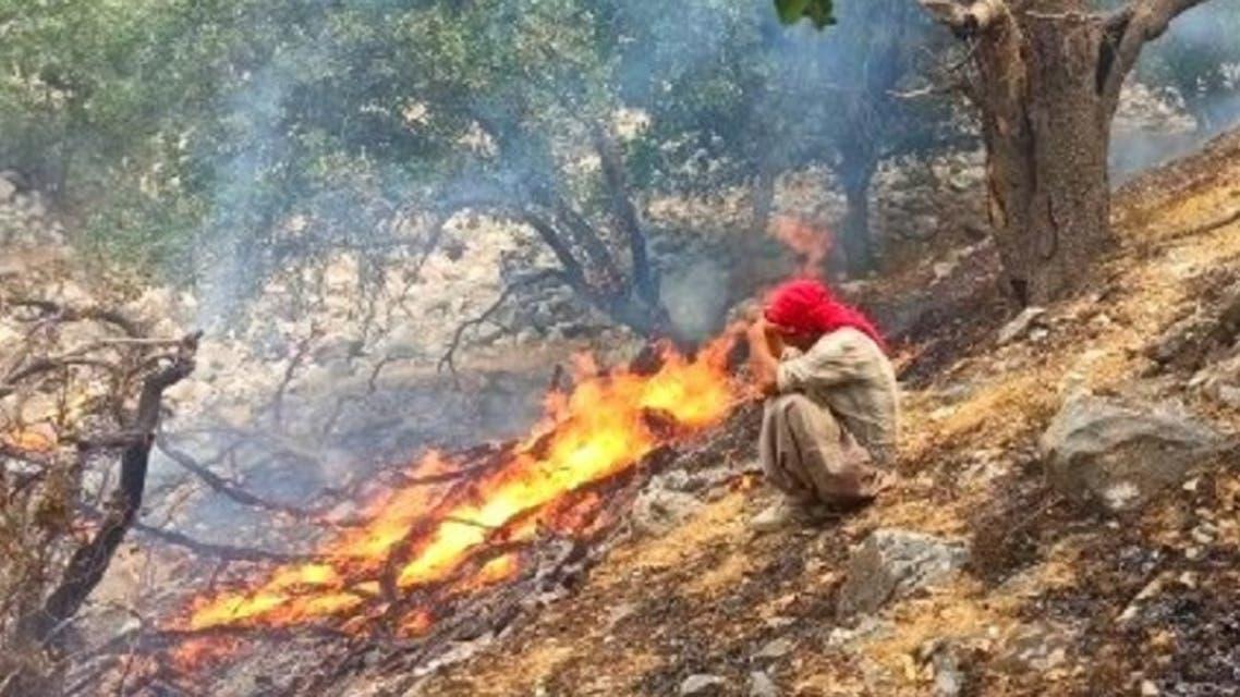 آتشسوزی در جنگلهای«کوهشره»
