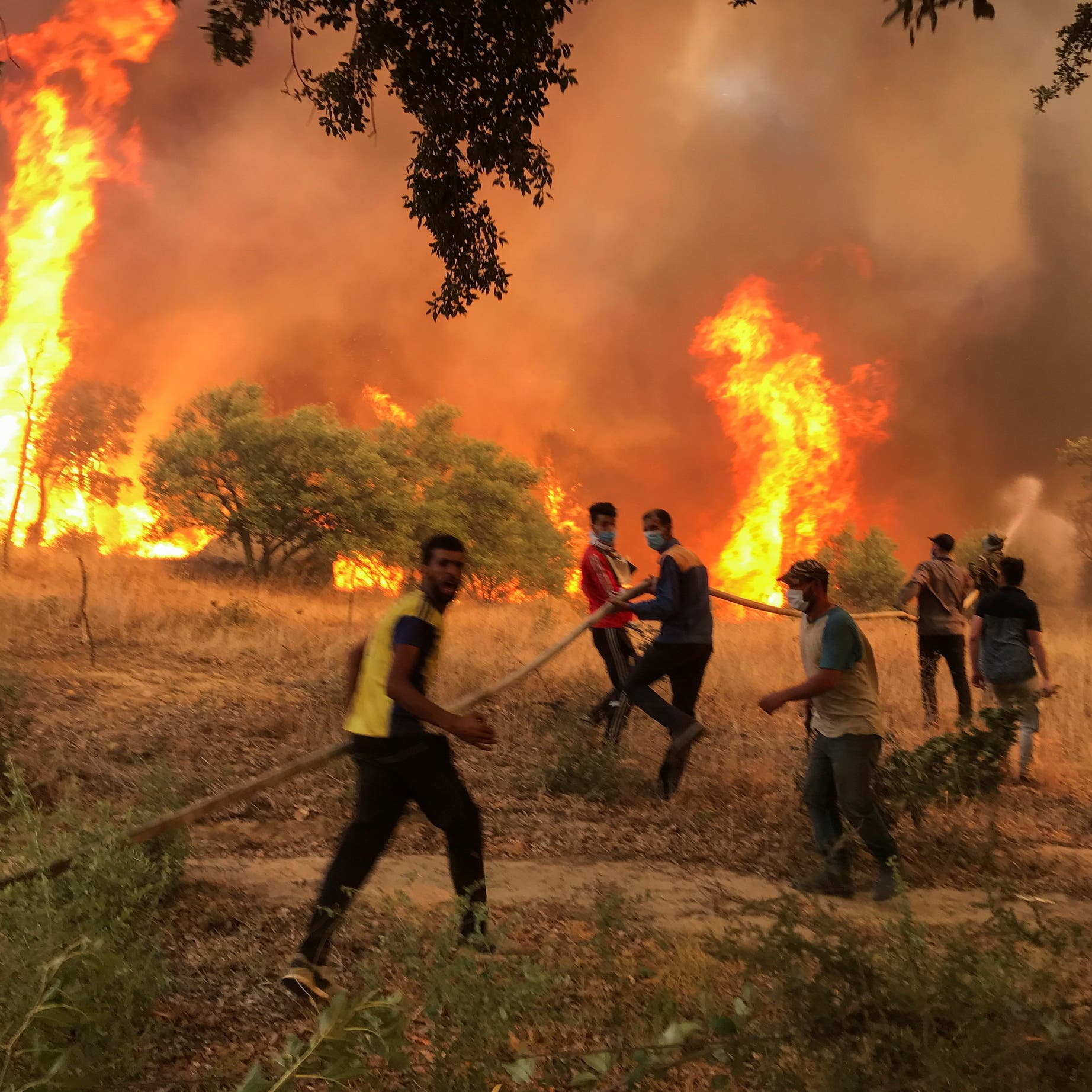 Algeria arrests 22 people suspected of being behind deadly wildfire 'disaster'