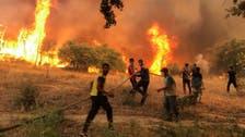 Algeria police arrest 30 people, including separatists, linked to deadly forest fires