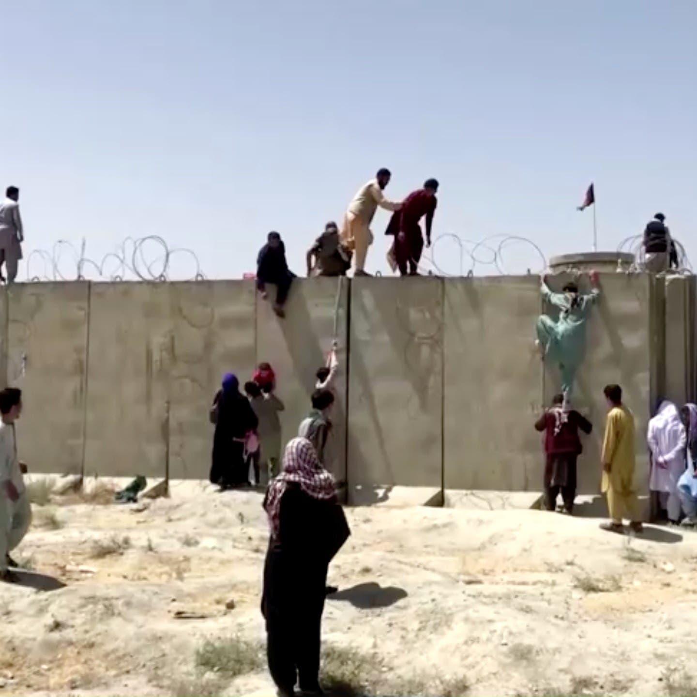 ألمانيا تعلق مساعدات..ورئيسها: مشاهد مطار كابل عار على الغرب