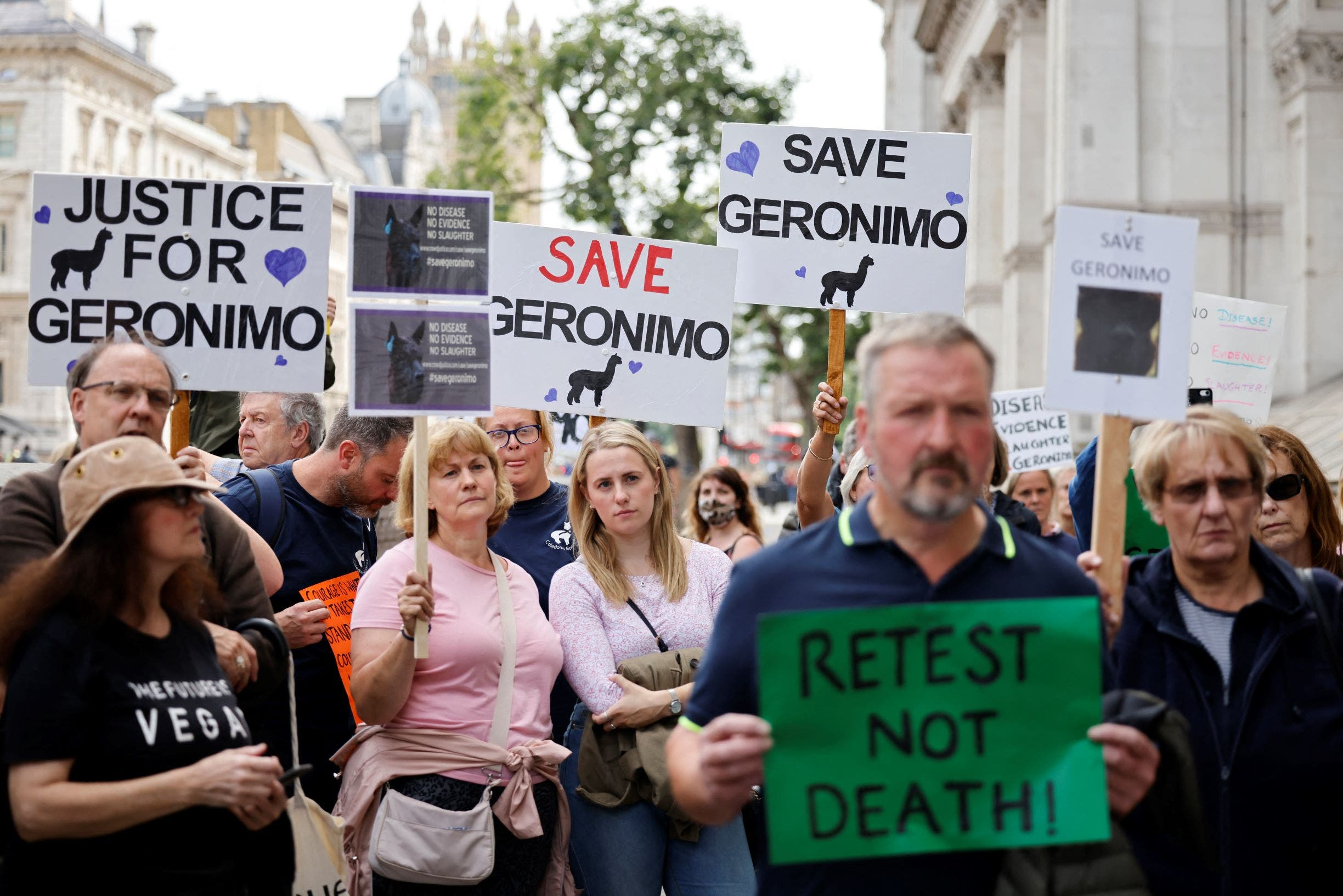 Protesters hold up placards as they gather outside Downing Street to protest against the decision to euthanize Geronimo, an alpaca which has tested positive for bovine tuberculosis, in cental London on August 9, 2021. (AFP)