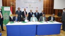 مصر.. تمويل بـ 4 مليارات جنيه لتطوير شبكات نقل وتوزيع الكهرباء
