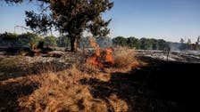 Gaza incendiary balloons spark fires in Israel, after weekend border clashes