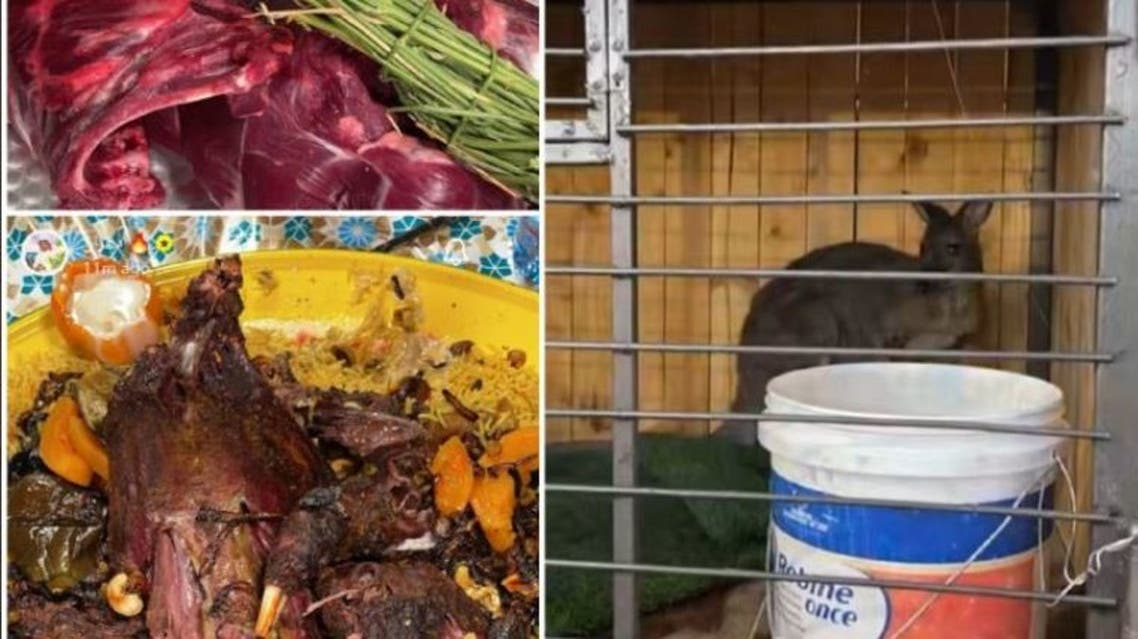 Kangaroo meat is seen on the left and a kangaroo in a cage is seen on the right in screengrabs from the video that went viral on social media in Saudi Arabia. (Screengrab)