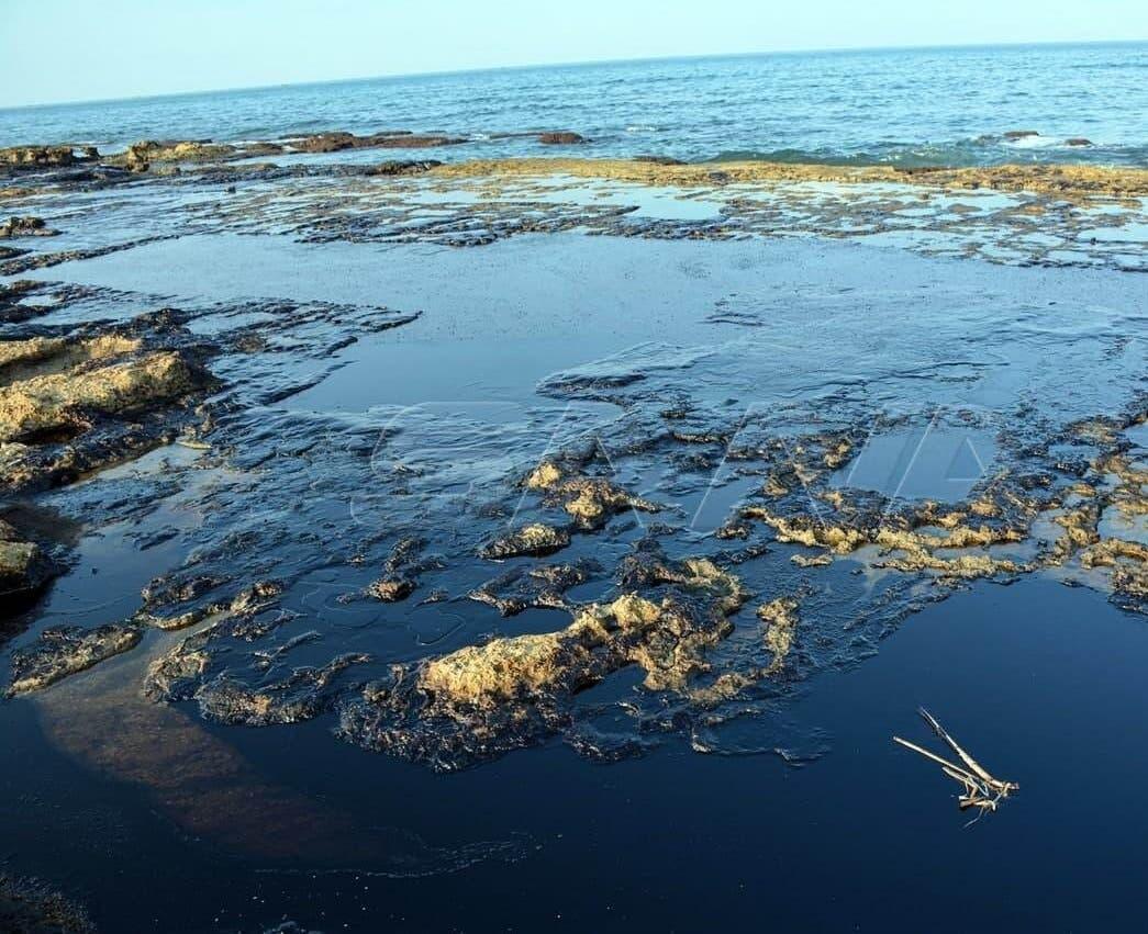 من التسرب النفطي على الساحل السوري