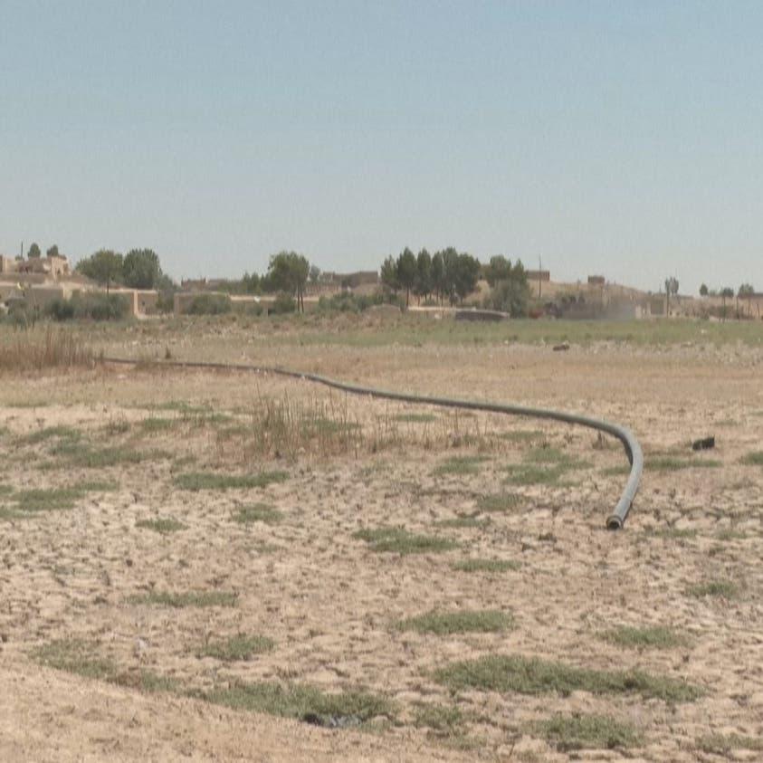 """الجفاف يزحف إلى زيتون سوريا.. تركيا تستخدم """"أخطر سلاح"""""""