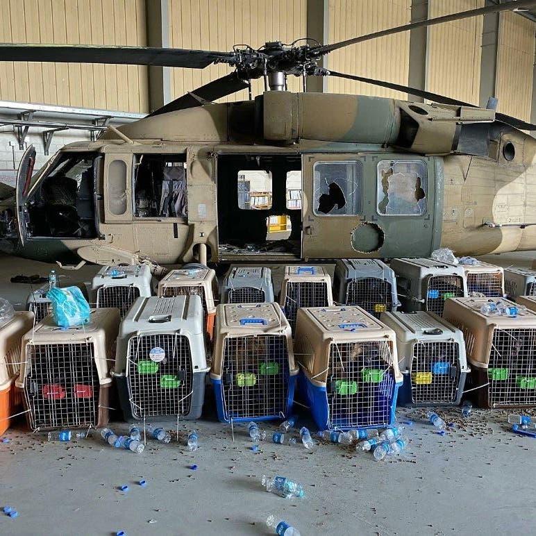 الجيش الأميركي ينفي أن يكون عناصره قد تركوا كلاباً في كابل