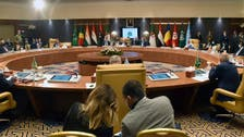 Libya's neighbors wrap up meeting by urging foreign fighters, mercenaries to leave