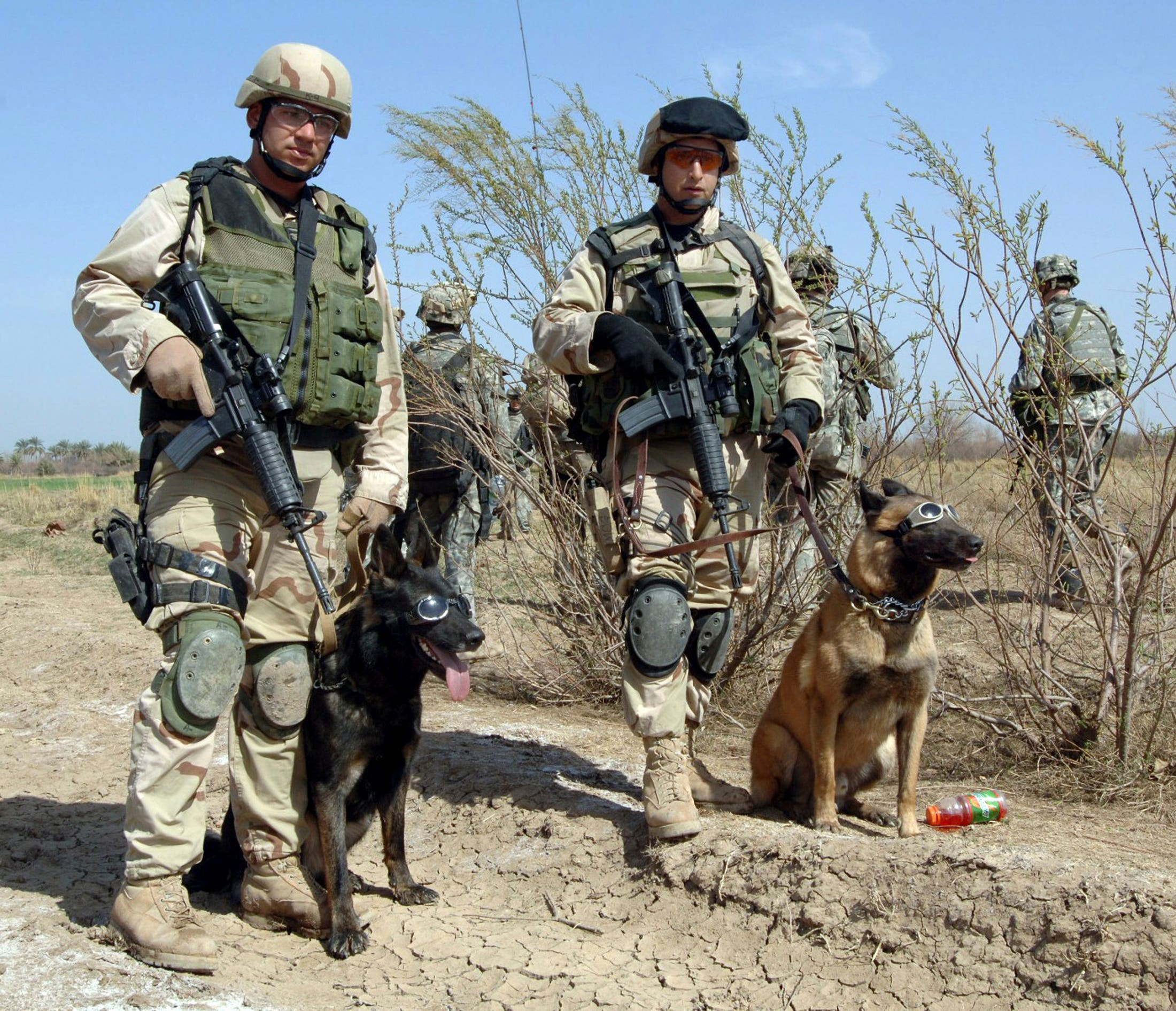 United States Air Force Tech Sgt. John Mascolo, and his dog Ajax (L) await a helicopter pickup with Staff Sgt. Manny Garcia, and his dog Jimmy, outside Forward Operating Base Normandy in Iraq in this undated handout image obtained by Reuters December 2, 2011. (File photo: Reuters)