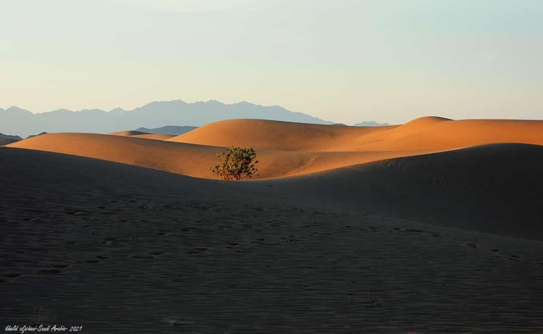 الكثبان الرملية في أملج ........