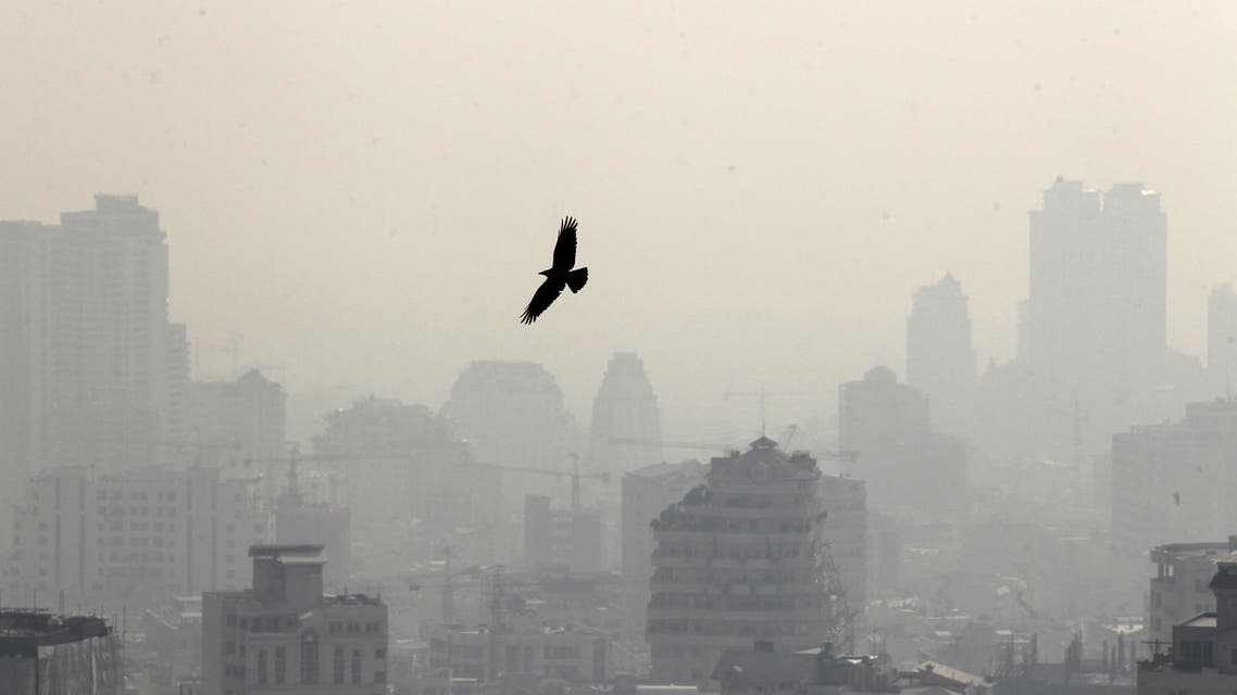 A picture taken on January 7, 2013 shows a bird flying in front of buildings in the polluted skyline of the Iranian capital Tehran. Air pollution in Tehran has left 4,460 people dead in a year, an Iranian health official said in reports Sunday, with another sounding the alarm over high dose of carcinogens in domestically-made petrol. AFP PHOTO/ATTA KENARE