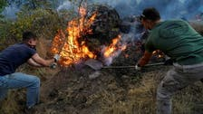 Wildfire in Spain was started deliberately: Official