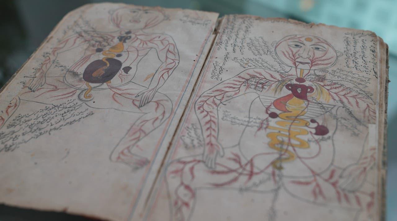 أول كتاب يرسم مكونات جسم الإنسان