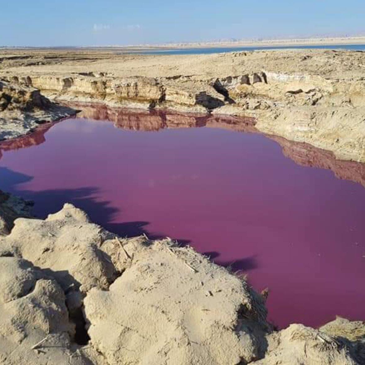 ضجة في الأردن.. بركة حمراء غريبة بجانب البحر الميت