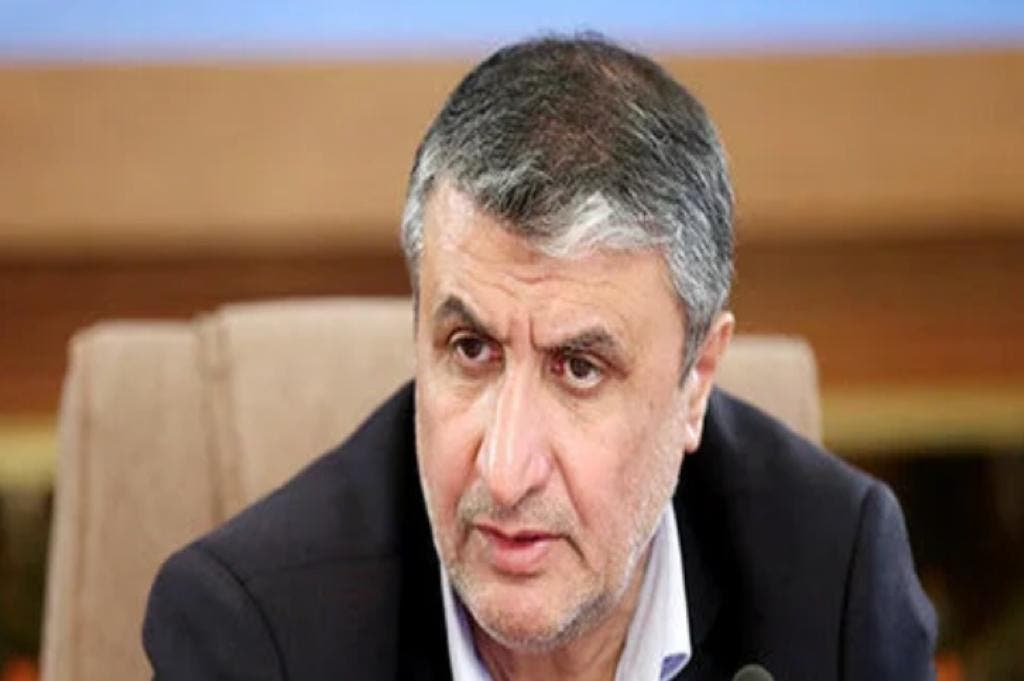 محمد اسلامی، رئیس سازمان انرژی اتمی ایران