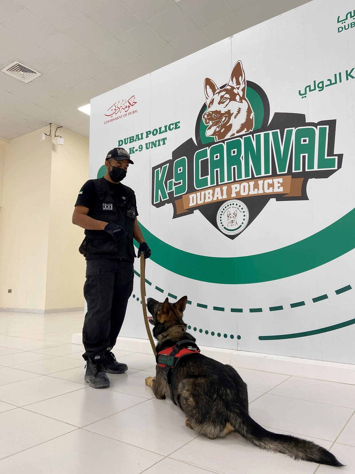 A dog that has been trained by Dubai Police K-9 unit to sniff out COVID-19 looks at his trainer in Dubai, United Arab Emirates, September 13, 2021. (Reuters/Abdel Hadi Ramahi)