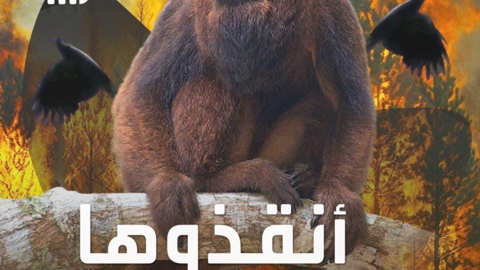 حكايتي على العربية | لاحتواء أثر الحرائق .. حملة جزائرية لإنقاذ الحيوانات المتضررة