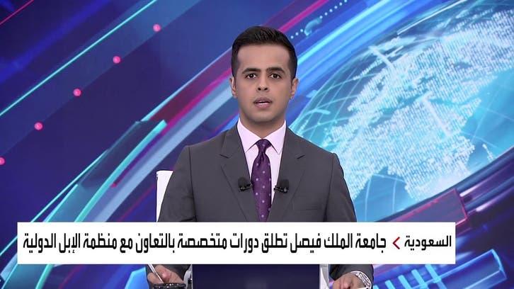 نشرة الرابعة | جامعة الملك فيصل تطلق دورات تخصصية في مجالات الإبل