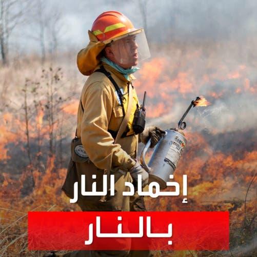 إخماد النار بالنار!.. وسيلة غريبة يلجأ إليها رجال الإطفاء لمكافحة حرائق الغابات