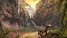 Dinosaurs' ascent driven by volcanoes powering climate change: Study