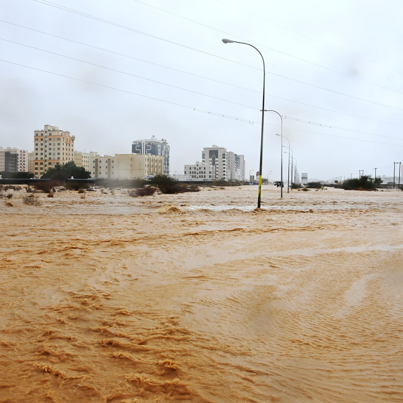 Tropical storm Shaheen to affect some regions in UAE: NCEMA