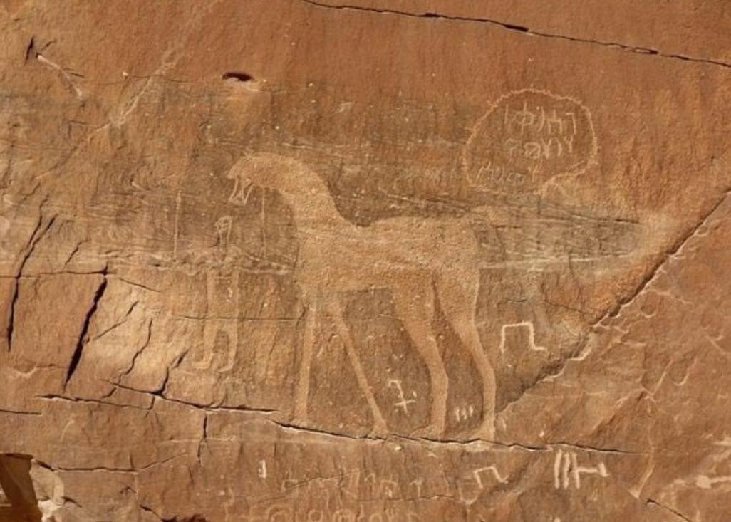 بعض الرسومات على صخرة النصلة