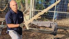 فيديو لسيف من زمن الصليبيين وجده غطاس إسرائيلي قرب حيفا