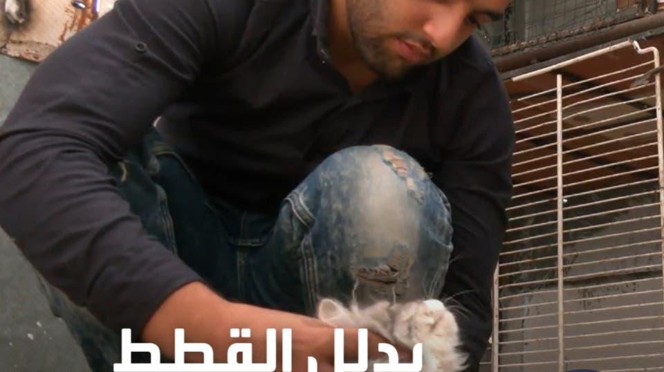 شاب فلسطيني يحول شغفه بعالم القطط إلى مشروع خاص