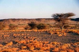 رحلة بحث شاقة عن قبر أم النبي محمد في الصحراء السعودية
