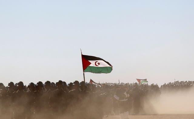 Qaddafi's fall strengthens Morocco over Western Sahara