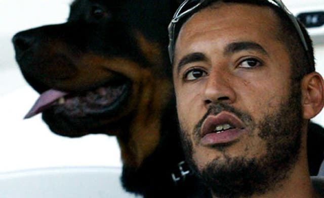 Qaddafi son says Interpol red notice 'political'; shortages 'killing patients' in Sirte