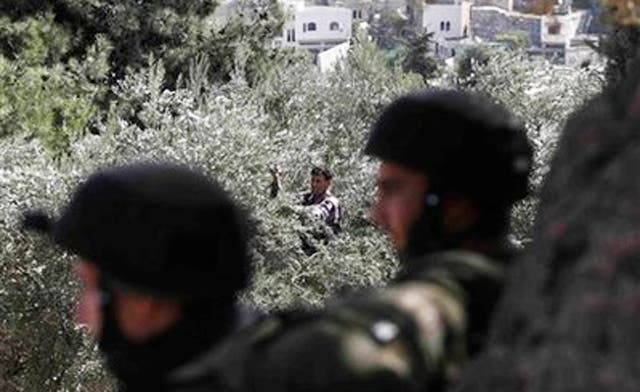 At least three Palestinians injured as Jewish settlers clash with farmers