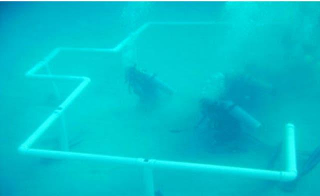 World's first underwater mosque built in Saudi Arabia