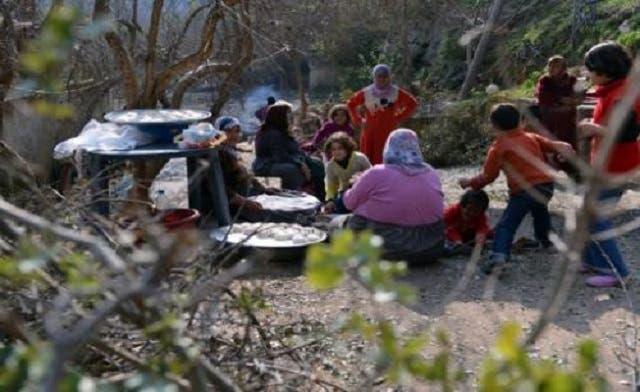 Civilians cut down rare Syrian trees for firewood