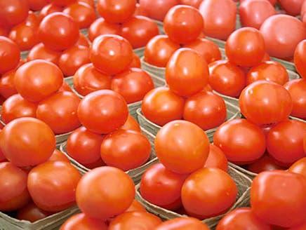 """دراسة برازيلية: الطماطم العضوية """"أفضل"""" من مثيلتها التقليدية"""